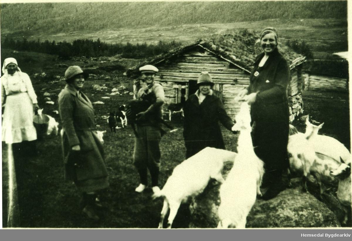 Tohøgda fjøs på stølen Fossen (Føssen, dialekt) på Søteli stølslag i Hemsedal. Kyrne heldt til i fyrste høgda og geitene i andre høgda