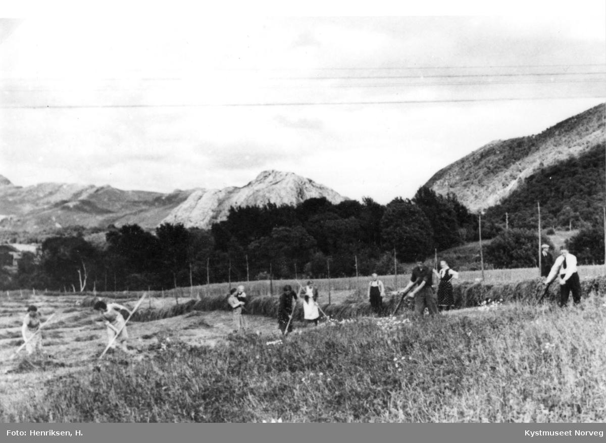 Leka, slåttonn i Gutvik