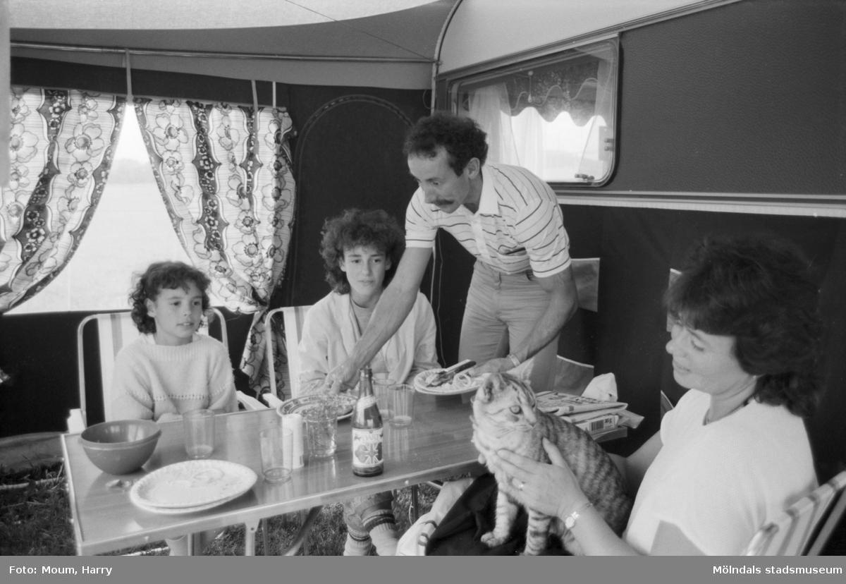 """Campare vid Åby camping i Mölndal, år 1984. """"Familjen Lind från Malmö har just avslutat lunchen när M-P lyfter på tältfliken. Kissemissen Musse väntar på rester och tittar ogillande på fotografen, som stör mitt i maten. - Vi trivs utmärkt här, säger de! Vi har hunnit med både Liseberg och Mölndalsbro. Trevligt affärscentrum ni har här i Mölndal, tycker frun i tältet. Husbonden lämnar gratis över ett tips om lite mer växtlighet runt och på campingplatsen tills nästa år. Det höjer trivseln. Lysekil och Smögen har varit norrpunkten för deras resa och nu är de på väg tillbaka till Skånemetropolen.""""  För mer information om bilden se under tilläggsinformation."""