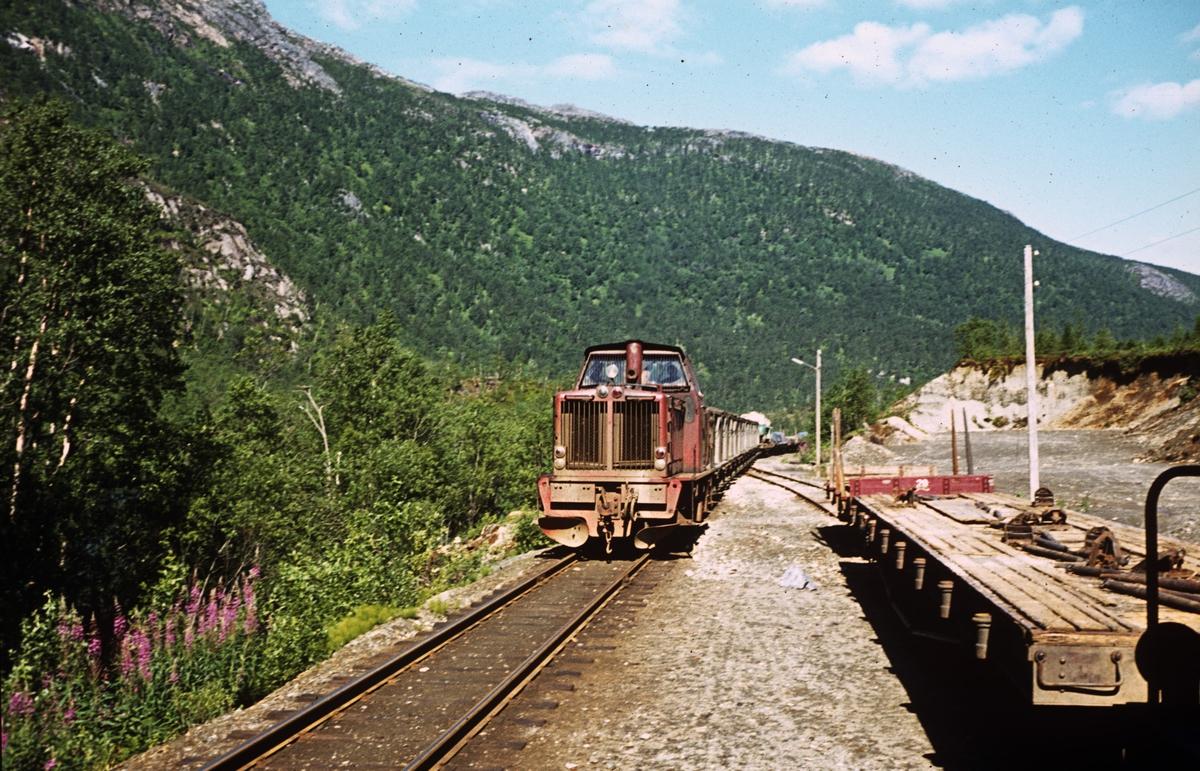 Kryssing på Sulitjelmabanen. Lokomotivet er ODIN.