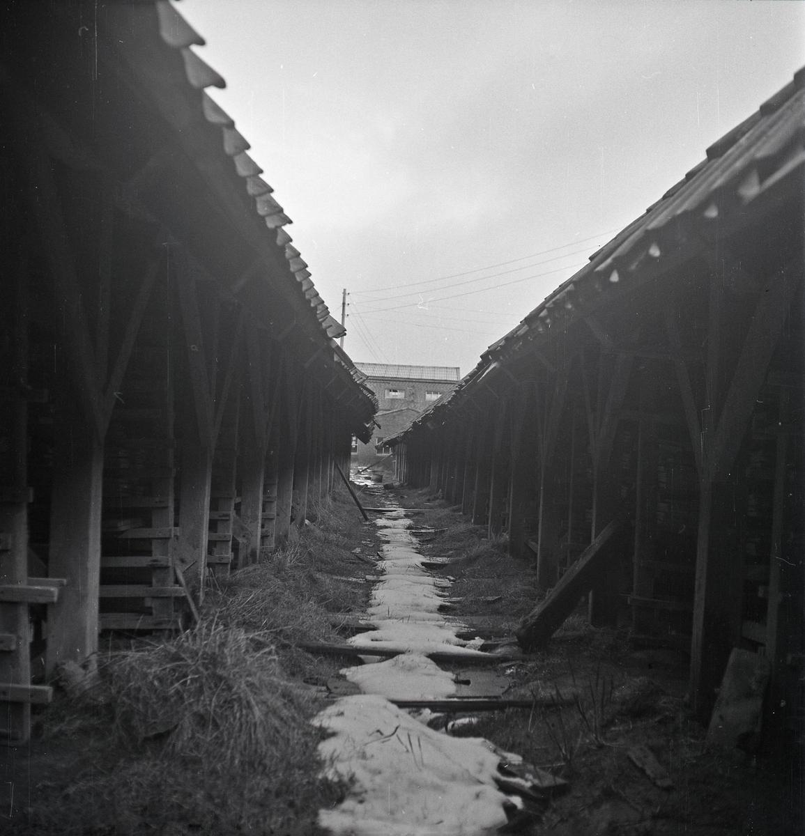 Registrering Bø Teglverk , eksteriør. Passasjen mellom de to tørkehusene på ovsnhusets vestside. sett mot nord med midtvalsen i bakgrunnen.