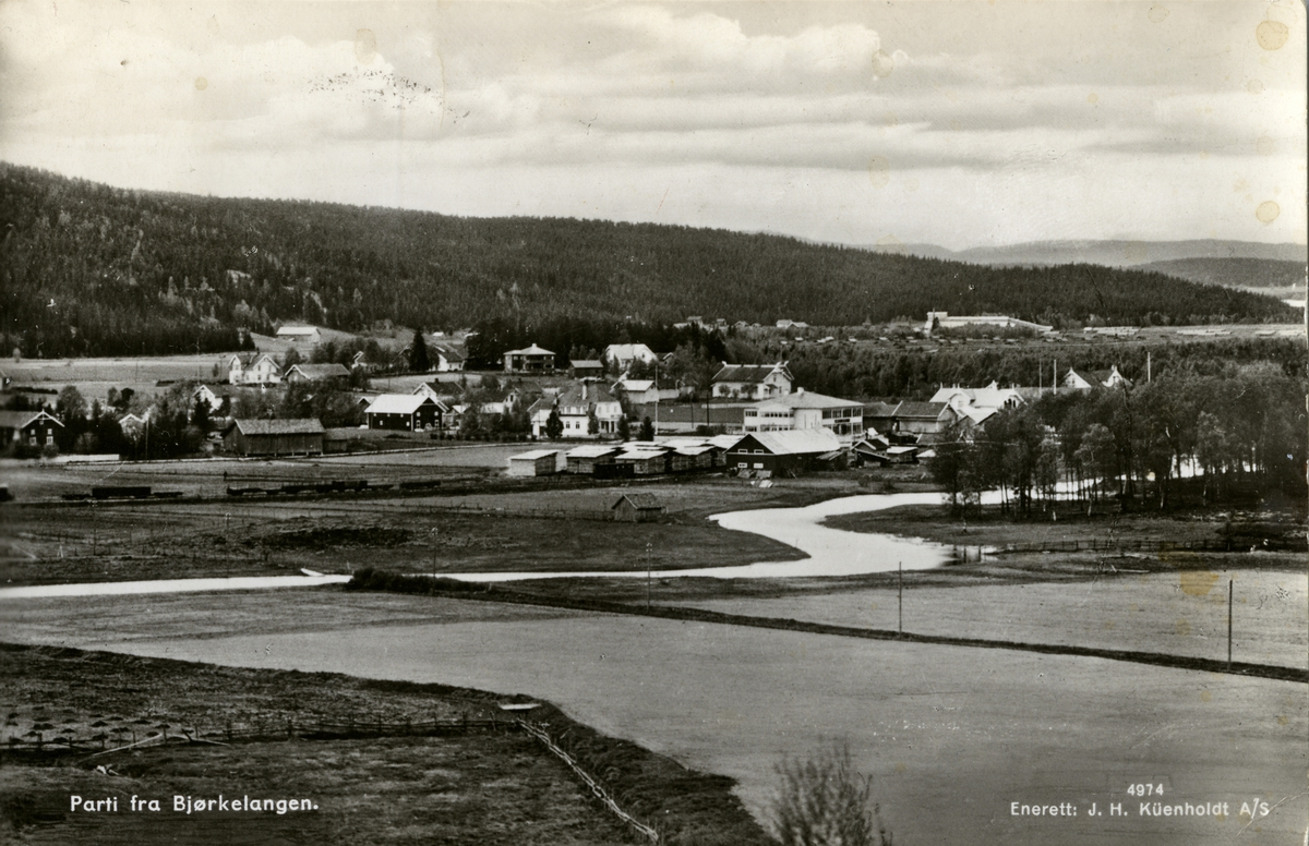 Oversiktsbilde fra tettstedet Bjørkelangen.
