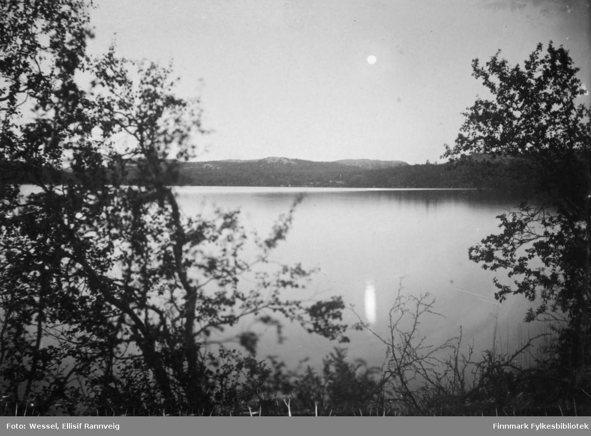 Fullmåne over sjøen fotorgerafert i sommernatt. Foran på bildet bjørketrær