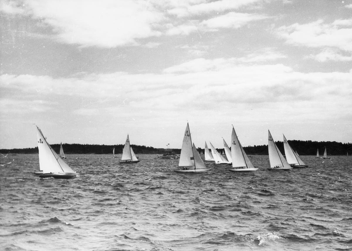 Övrigt: Från Sandhamnsregattan augusti 1949. De båtar vars segelnummer kan urskiljas är fr v t h 6-S59 WHY NOT (b. 1947, konstr. Tore Holm), 6-L43 BOO-HOO (b. 1938, konstr. Gösta Kyntzell), 6-L30 RAILI (b. 1937, konstr, Gunnar L. Stenbäck), 6-S61 ALIBABA II (delvis skymd; b. 1948, konstr. Tore Holm), 6-S54 MAY BE VI (b. 1946, konstr. Tore Holm), 6-N73 LULLY III (skymd; b. 1940, konstr. Henrik Robert), 6-L26 VINNIA (b. 1935, konstr. Christian Jensen), 6-S62 TRICKSON VI (b. 1948, konstr. Arvid Laurin) samt, i ledningen, 6-S6 FÅGEL BLÅ (b. 1937, konstr. Tore Holm).