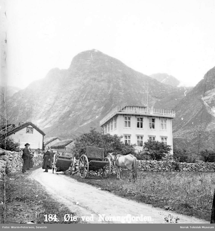 En mann og en kvinne prater sammen ved en hest i Øie i Norangfjord