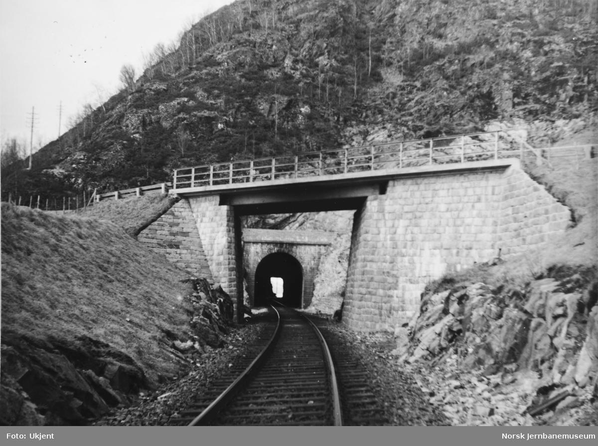 Anlegget Mosjøen-Mo i Rana : overgangsbru for riksvegen sør for Lindset tunnel, pel 975