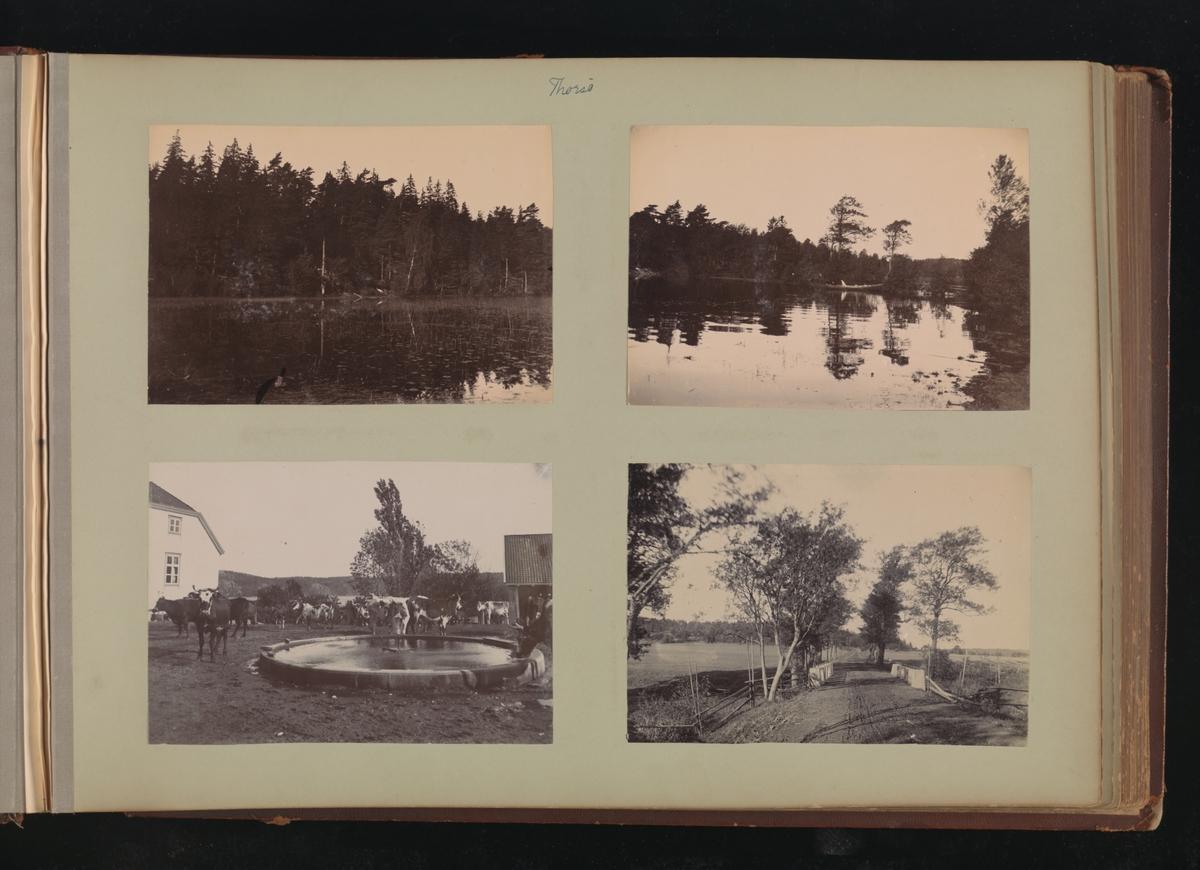 Albumside 30 av grågrønn kartong med fire bilder fra Thorsö.