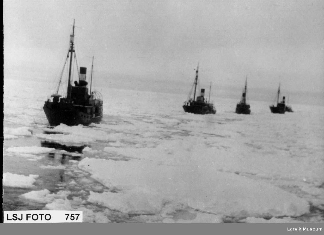 Fire hvalbåter etterhverandre i isen