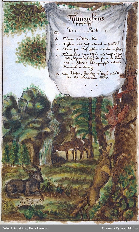 Finmarchens beschrifuelsis 2. Part Cap. 1. Tamme som Vilde Diur. 2. Fuglene med deris sortement oc egenschab. 3. Wand som Haf-fische, Monstra oc gevext. 4. Finmarchens Laxe: Elfuer med deris beschrifuelse, bygning oc brug, udi sar oc om Tanen oc Altens tildragelighed mellem Danmark oc Sverrig. 5. Om Urter, blomster oc Vegst som udi Finmarchen falder