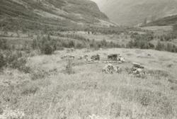 Dokumentasjonsbilder i serie av noen gamle hustufter i Oalsb