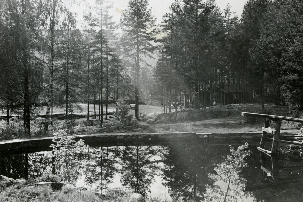 Summer stillness at the pond at the Ruudhytta cabin