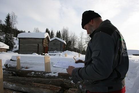 Notering av stokker (Foto/Photo)