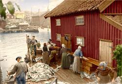Långaberedning i Grundsund sommaren 1920