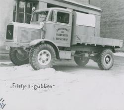 """""""Filefjell-Gubben"""""""