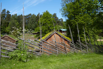Fjordane. Foto/Photo