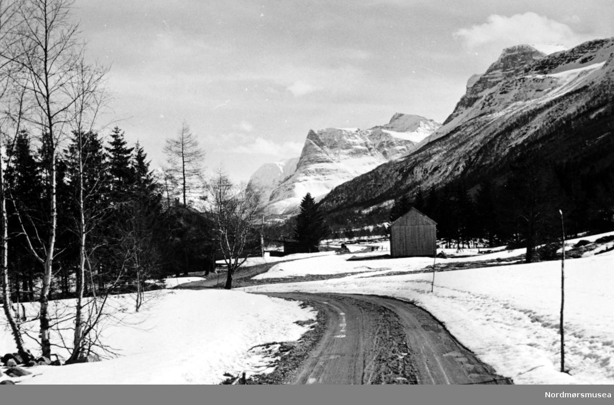Dalsbø, Innerdalstårnet i bakgrunnen, Sunndal Kommune (info fra Ole Erik Loe 2017), fotograf kan være Georg Sverdrup og datering kan være fra perioden 1930 til 1939. Fra Nordmøre Museums fotosamlinger.