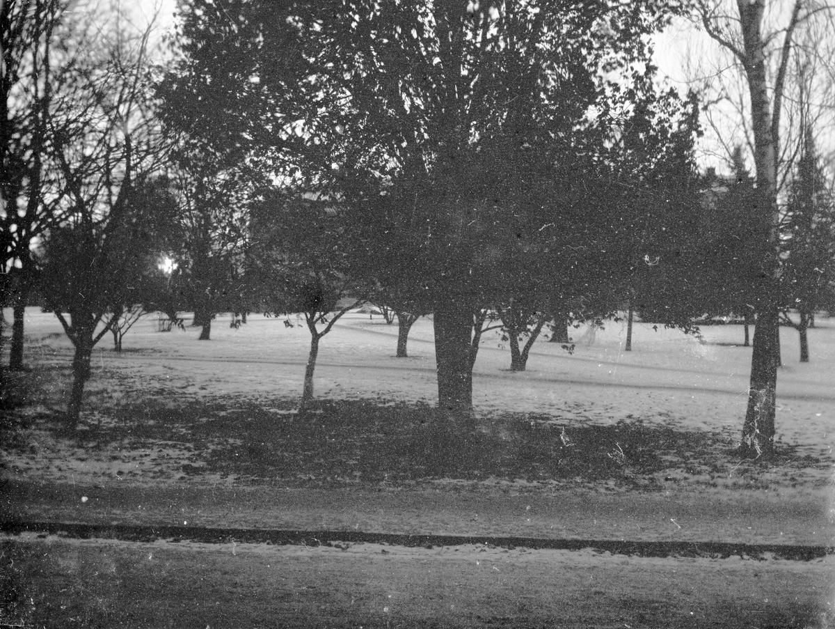 Park. Tidsomfånget är 1900 - 1940