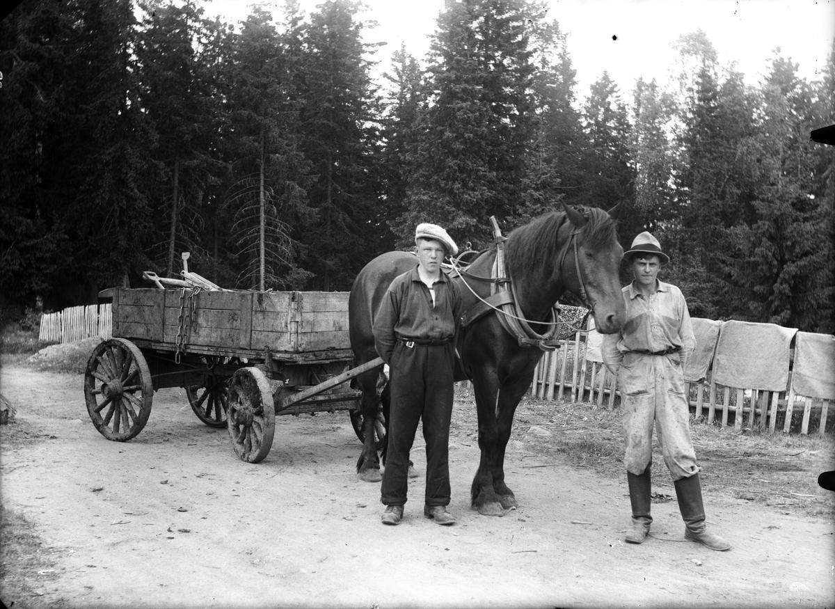 Axmar bruk, häst och vagn, till vänster Kalle Lundgren.