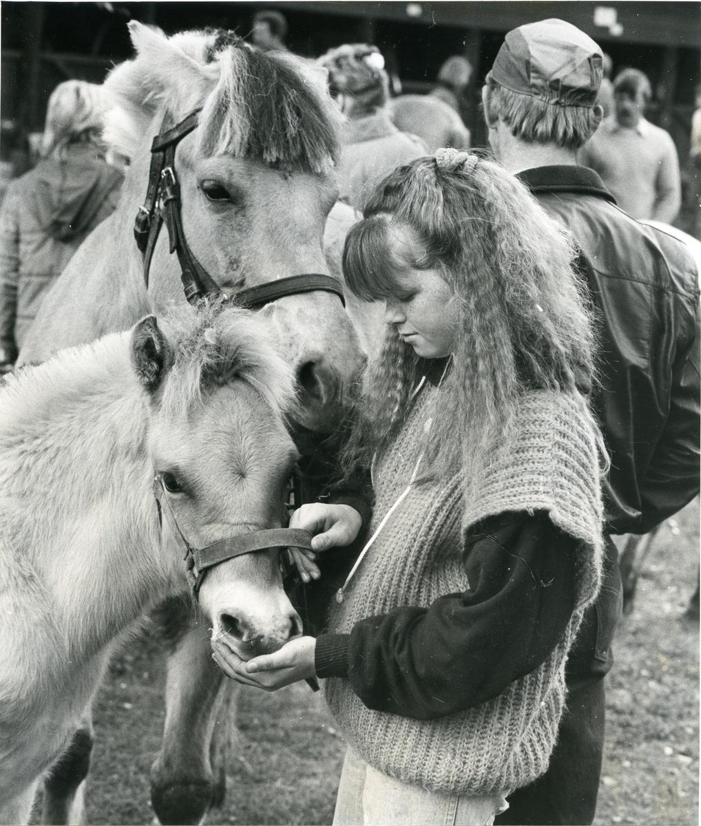 Jente med hest