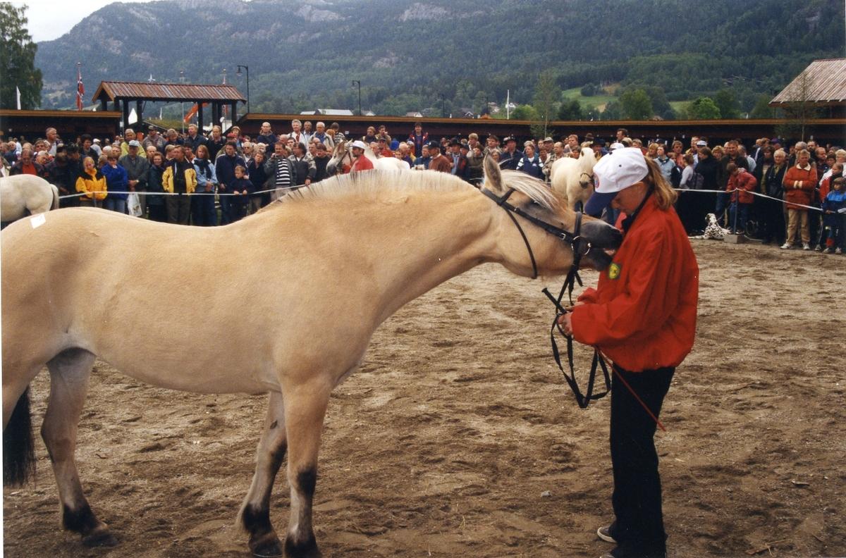 Mønstring av hest