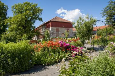 Fra urtehagen: Store blomsterbed som bugner av blomster i oransje og mørkerosa og gult. I bakgrunnen ser vi en del av Storhamarlåven; et bygg oppført i kalkstein og røde planker.