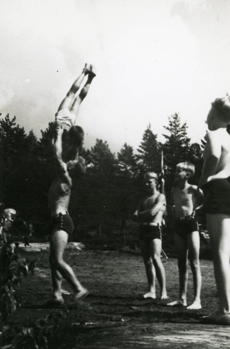 From the training camp for boys at the Ruudhytta cabin
