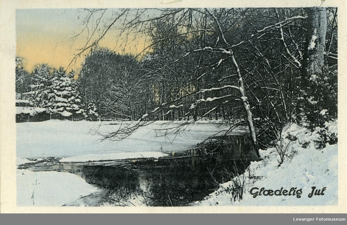 Postkort med vintermotiv