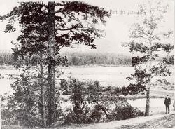 Parti fra Altendalen ved Tangen bro. Personer, elv, skog.