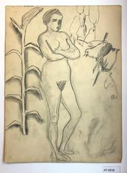 Kvinne, fugler og plante [Tegning]