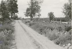 Grusväg i Dvärgstad utanför Gamleby.