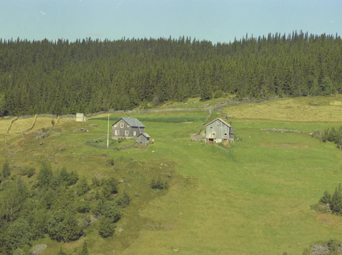 Aasen (Åsen), småbruk, Svatsum, Vestre Gausdal. Stue, uthus, begge umalt bordkledning. Grønnsakhage. Litt oppdyrka mark. Hesjer. Fjording. Granskog.