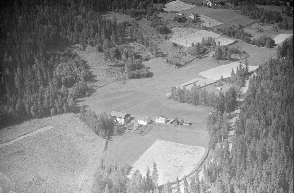 Sveajordet småbruk, Øyer, 1953, låve, tofarget, to våningshus, flere mindre uthus. kjøkkenhage,  jordbruk, slåttonn, hesjing, kornskurd, blandingsskog