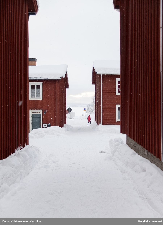 Vilhelmina kyrkstad, Arktis