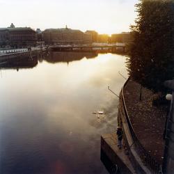 Fiske på Stockholms ström en tidig morgon.