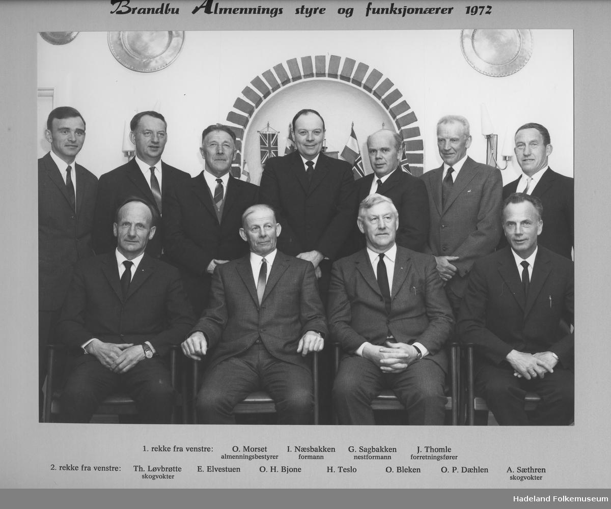 Brandbu Almennings styre og funksjonærer 1972
