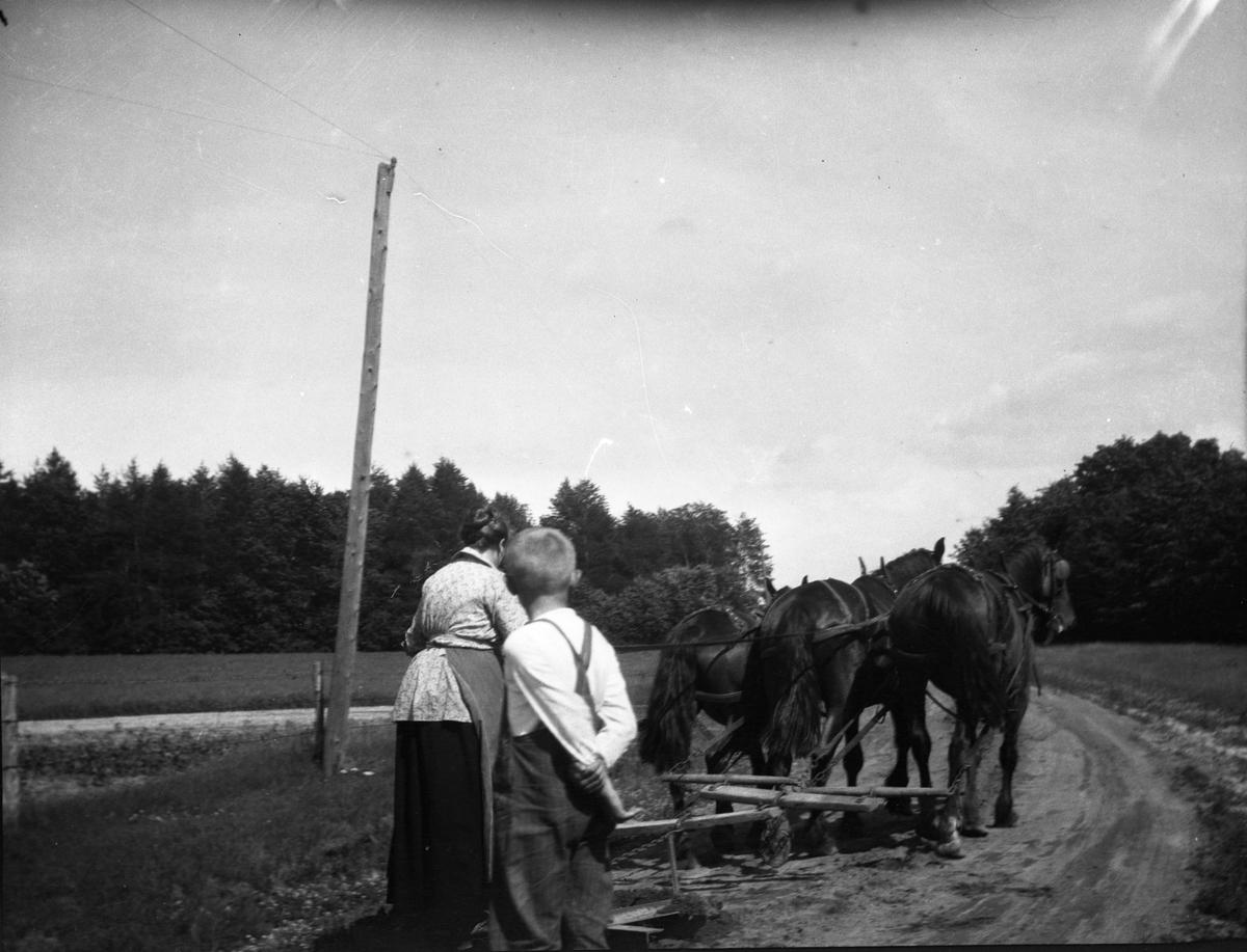 Erling og Lena Rustad med hester