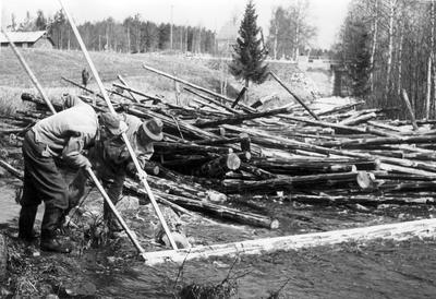 Tømmerdrift. Foto/Photo