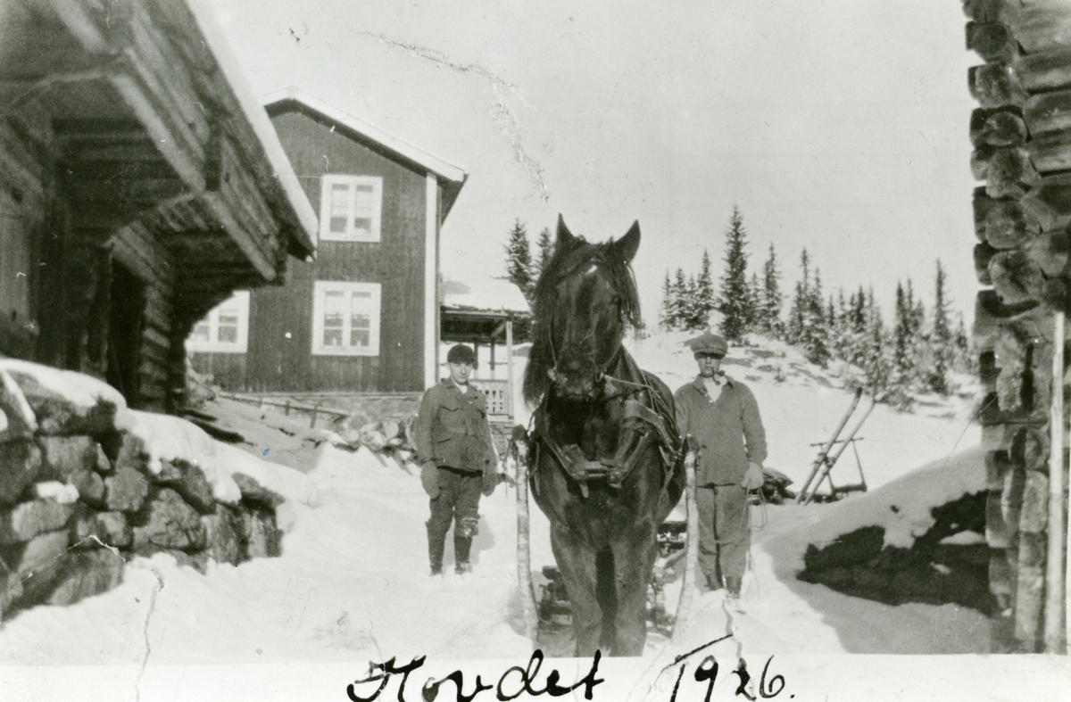 Halvard og Ingvar Johnsen med hest på veg til tømmerskogen, 1926.