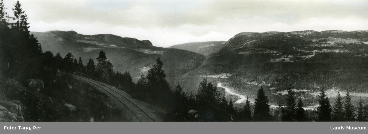 Etnas dal. Stuveåsen, Leppadalen, Svinkampen
