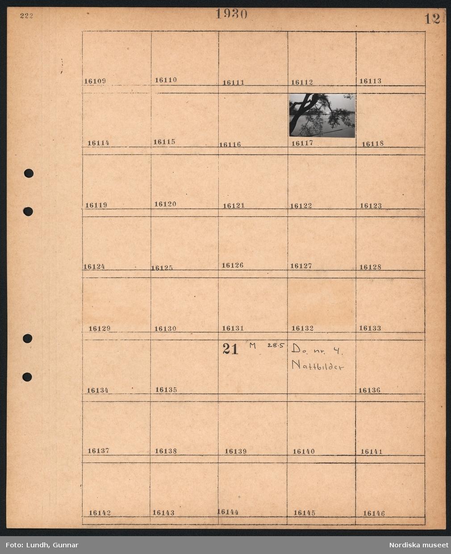 Motiv: Stockholmsutställningen 1930, Natt; Nattbild med träd och vatten med byggnad i bakgrunden.  Motiv: Stockholmsutställningen 1930, Nattbilder; Ej kopierat.
