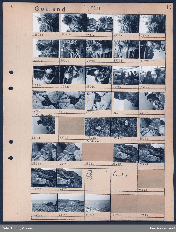 """Motiv: Gotland, Karlsö; En man i dykardräkt går ner i ett vrak, två män på däcket av ett vrak, landskapsvy med strand och klippa, fågelägg i ett bo """"Fiskmåsbo"""", fåglar sitter på klippa.  Motiv: Gotland, Karlsö; Två kvinnor går på stranden."""