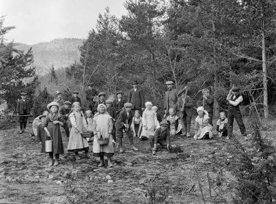 Skoleelever fra Heddal i Telemark lærer skogplanting.