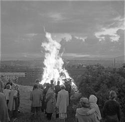 Serie. St. Hans-feiring i park i Oslo. Fotografert juni 1957