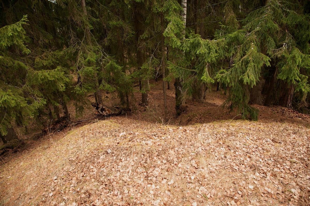 Fra toppen av gravhaugen på Hovinsholmen, Helgøya, Hedmark. En kan se spor etter den sammenraste sjakten fra siste utgraving. Haugen er stor med en høyde på 6 meter og diameter på 35 meter.