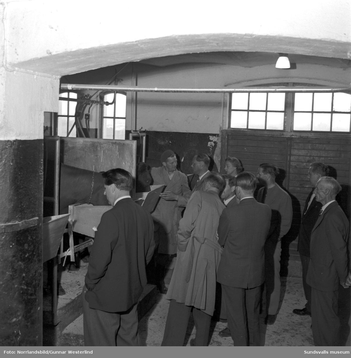 Lantbruksstyrelsens byggnadskonsulenter på studiebesök på Vivstavarv och Johannedal.