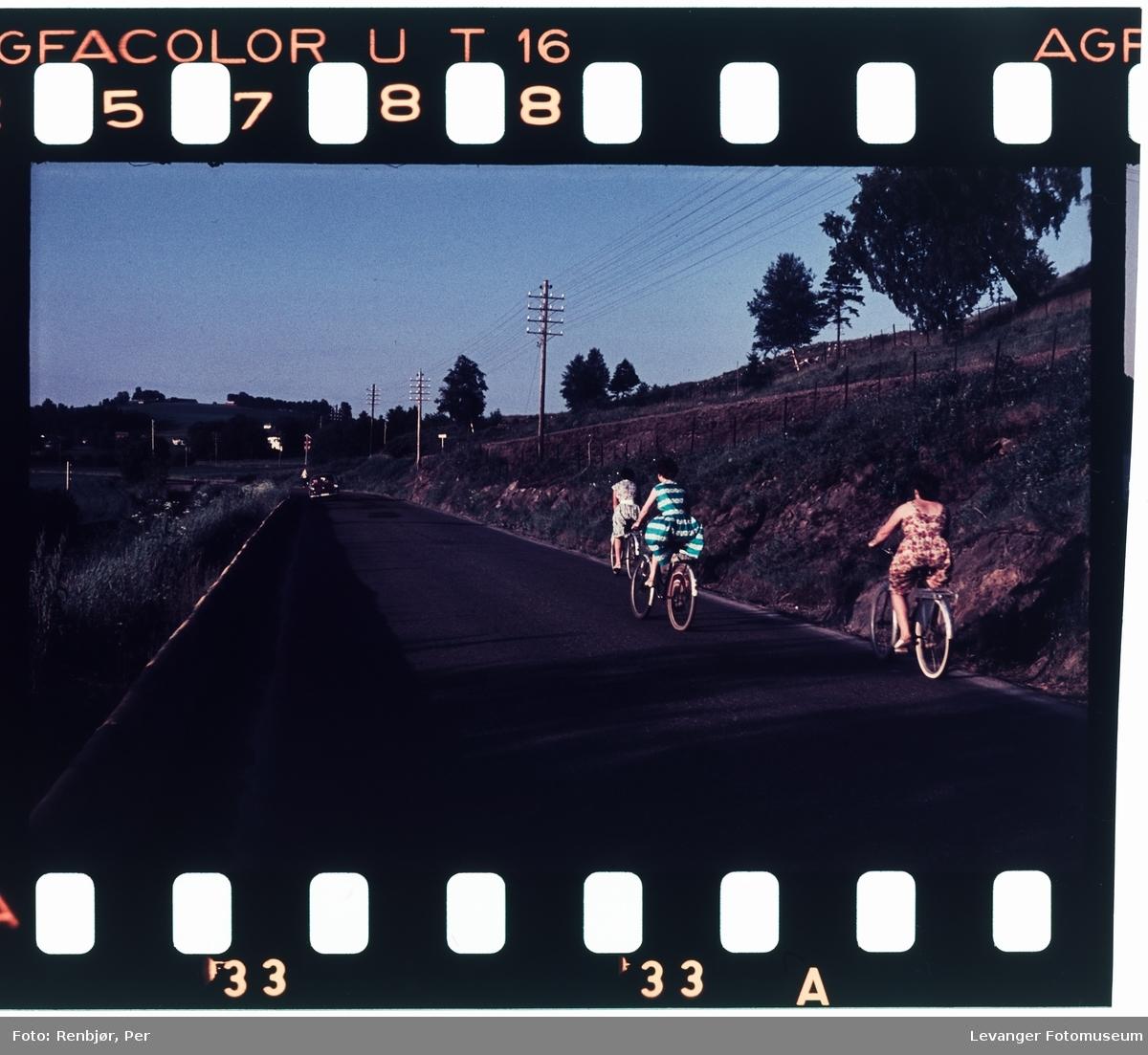 Tre kvinner sykler langs vegen.