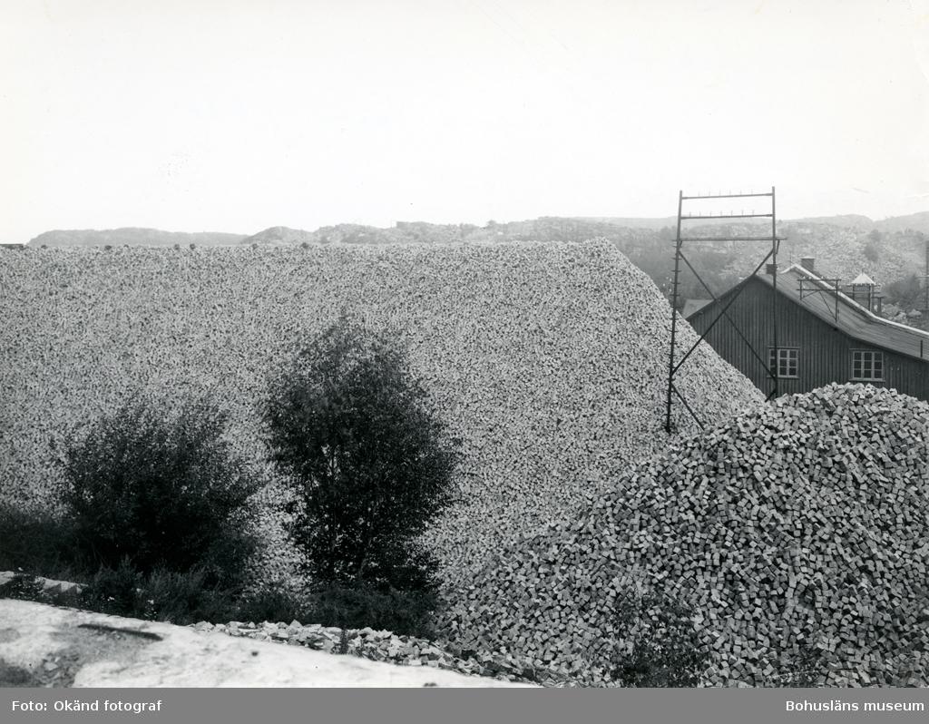 """""""Statens lager 1938""""(enligt notering på kortets baksida)"""