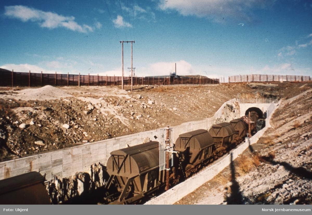 Kistransporter fra Hjerkinn til Sarpsborg - opplasting i tunnelen på Hjerkinn