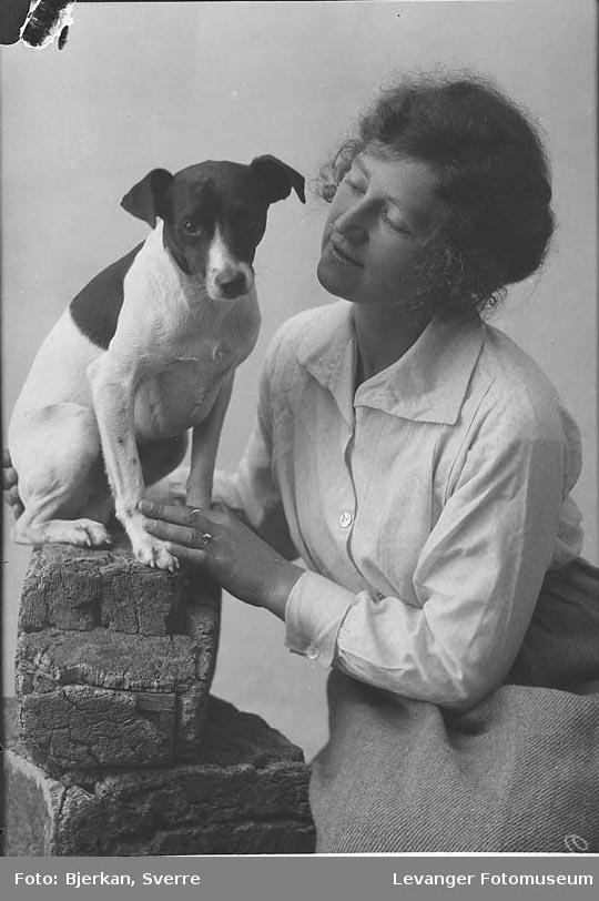 Portrett av jack russel terrier og Holm.