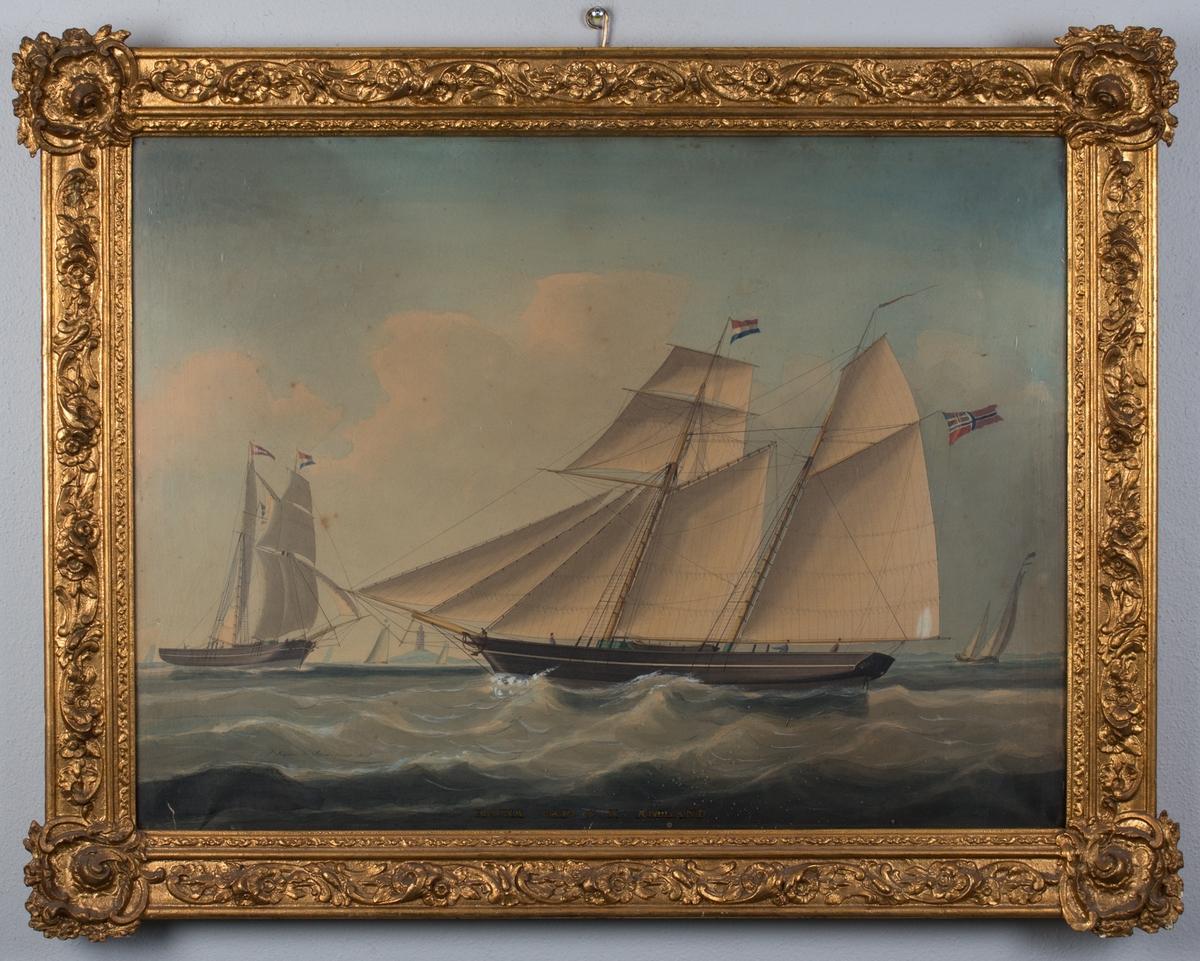 Skipsportrett av skonnert IDUNA med full seilføring. Nederlandsk flagg i masten, norsk flagg med unionsmerke i akter. Samme skip fra annen vinkel sees til venstre i motivet, samt flere mindre skip og et fyrtårn. Tre mann på dekk.